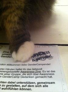 Bild: Hosentaschenzine unter einer Katzentatze
